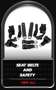 Seat Belts and Safety