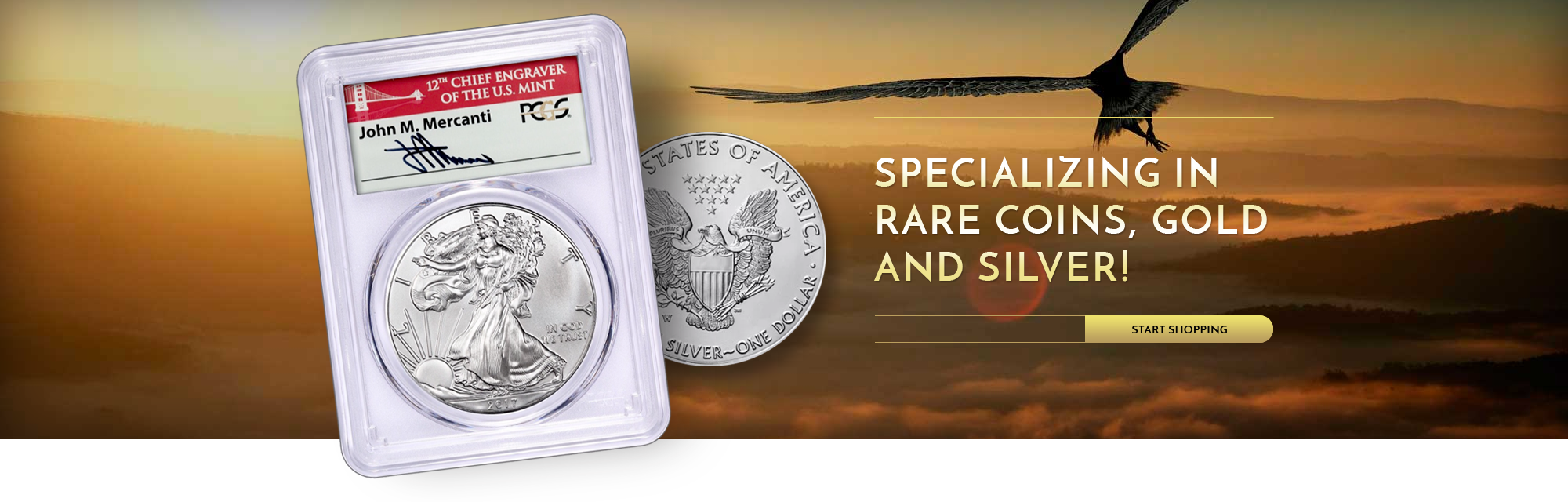 Specializing in rare coins, gold and silver! - start shopping