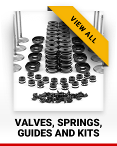 Valves, Springs, Guides and Kits