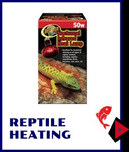 Reptile Heating