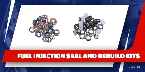 Fuel Injection Seal and Rebuild Kits