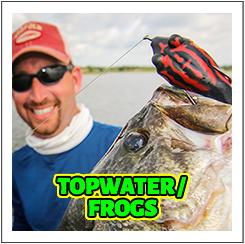 HTopwater / Frogs